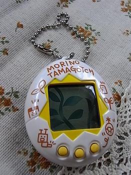 RIMG0024.JPG